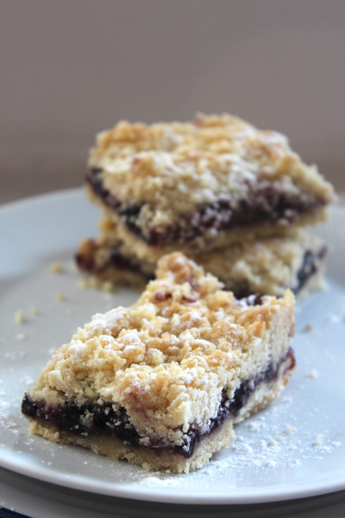 blueberry-bars